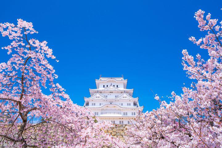 全部ちゃんと言える?世界に誇る日本の世界遺産18選
