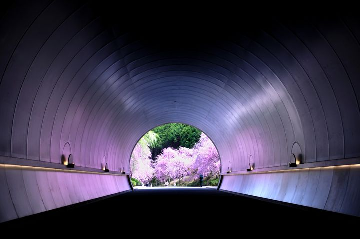 自然溢れる場所が好き。東日本VS西日本の絶景対決10選