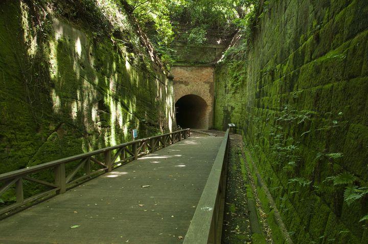 東京から約1時間!無人島「猿島」がまるでラピュタの世界だと話題