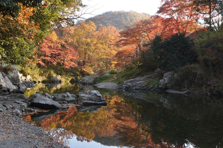 """マイナスイオンを浴びに行かない?日本の美しすぎる""""渓谷""""6選"""