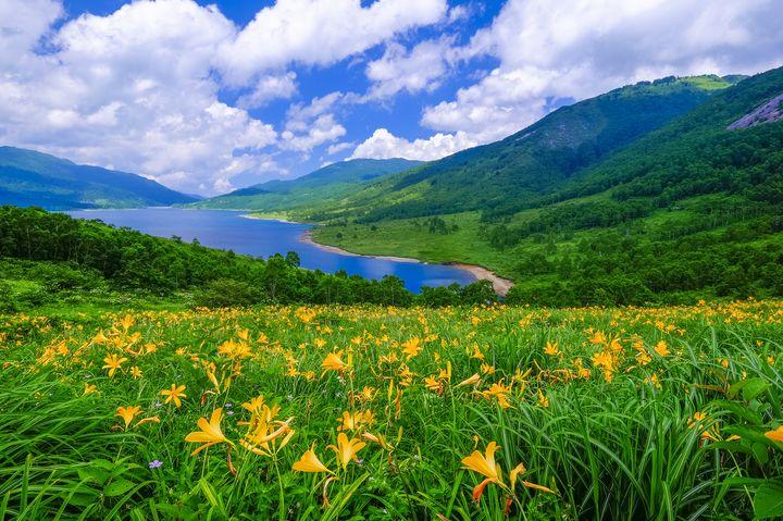 """""""天空の湖""""と賞賛される絶景!群馬県の「野反湖」は大自然の宝庫だった"""