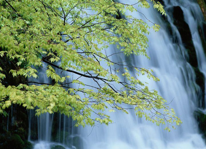 秋田の自然と温泉に癒されよう!秋田でおすすめのホテルランキングTOP20
