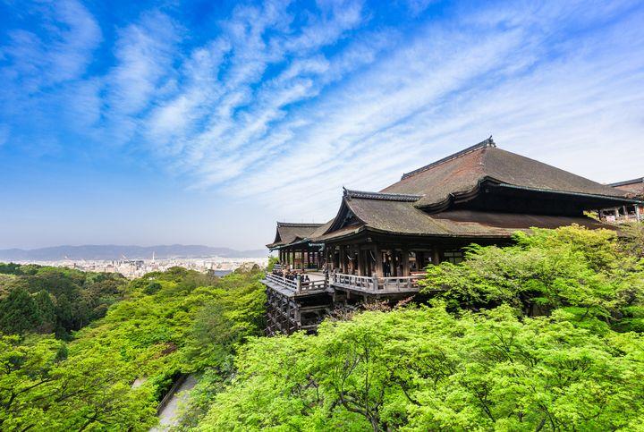 """心安らぐ夏だけの絶景。""""青もみじ""""が美しい京都のおすすめスポット6選"""