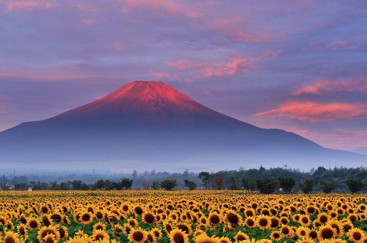 """死ぬまでに一度は見たい!""""日本の夏""""だからこそ見たい美しい絶景8選"""