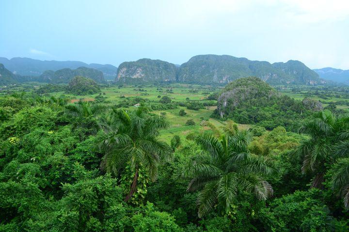 時を超えた絶景!「ビニャーレス渓谷」はキューバに隠された桃源郷だった