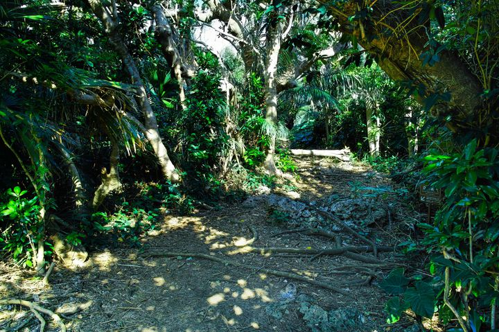 島民にとって非常に大切な聖地。立ち入りが許可されていないところへは絶対に足を踏み入れてはいけないません。