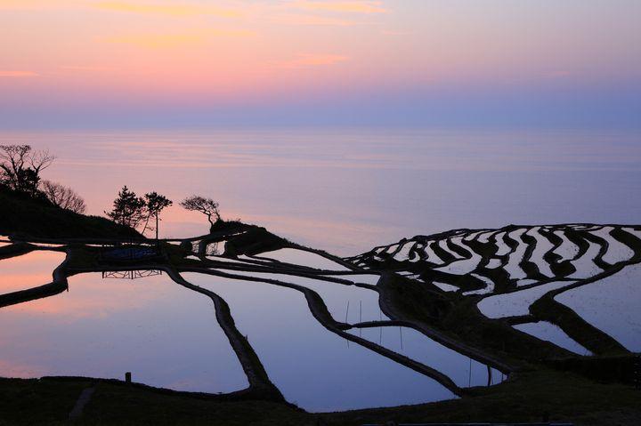 日本が誇る美しき絶景。人生で一度は見たい日本全国の「棚田」7選