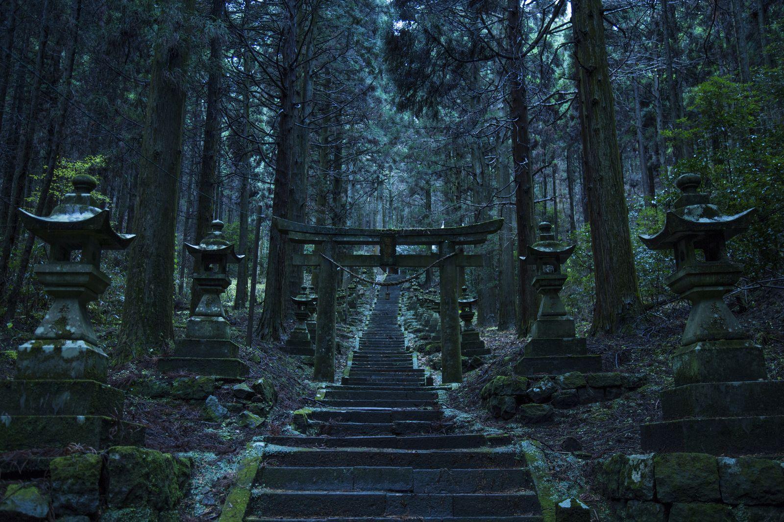 身震いするほどの異空間。熊本の「上色見熊座神社」が神秘的すぎる                このまとめ記事の目次
