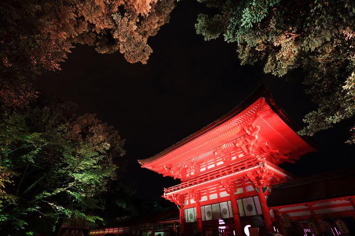 【終了】世界遺産が光のアート空間に!チームラボが京都の下鴨神社で「光の祭」開催