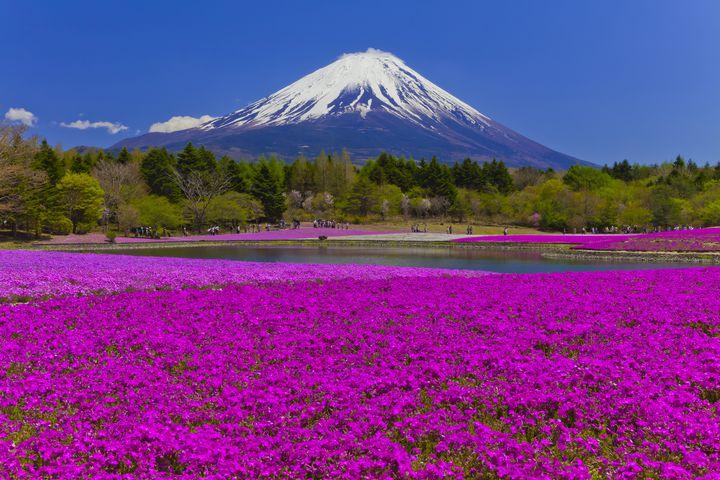 富士山だけじゃない!山梨の人気観光スポットランキングTOP40