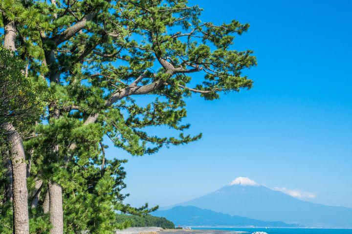 """絶対に行きたい!""""静岡""""のオススメ観光スポットランキングTOP40"""