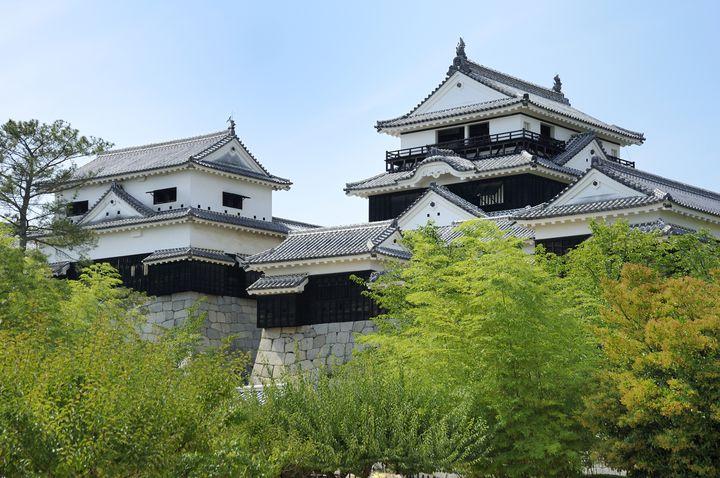 初めてでもココは押さえたい!愛媛県の2大名城を巡る1日ドライブプラン