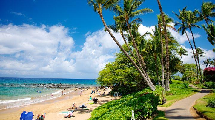 マウイ島の南西部の高級リゾート地区にあるワイレアビーチは、パウダー状の金色の砂浜が広がる人気観光スポットです。またアオウミガメを間近で見たり、マンタと泳ぐこともできるダイビングツアーはおすすめです。