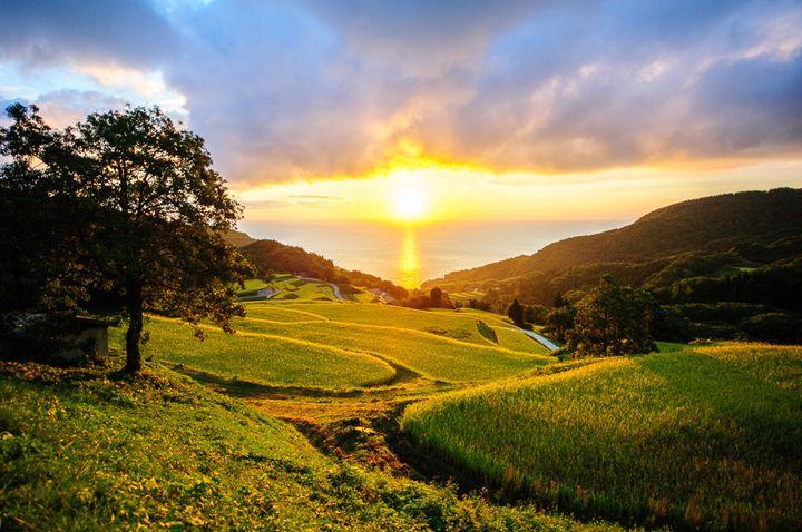 稲作の始まりは約2000年前からと伝えられています。もともとは平野の湿地にて稲作が行われていましたが、江戸時代からの金銀山採掘による人口増を賄うために、山間地での稲作も盛んになりました。金山の水をくみ出すために使われた水上輪も農業に活かされました。