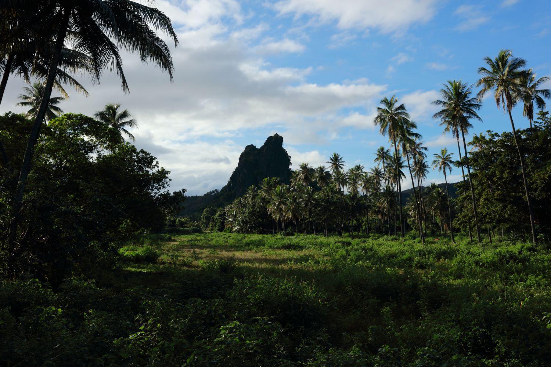 知る人ぞ知るワイルドな自然の宝庫!ニューカレドニアの本島北部の魅力とは