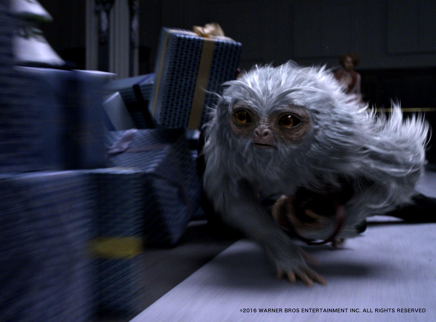 魔法動物に会えるかも!ファンタスティックな動物を巡る冒険旅5選