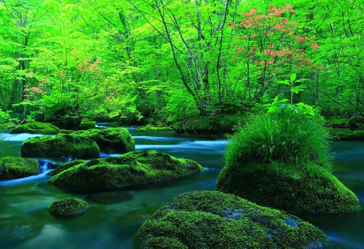 【完全保存版】初めての青森・奥入瀬・十和田で絶対にやるべき観光おすすめ8選