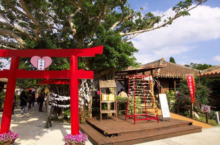 恋愛運UPは確実!福岡にある全国で1社だけの「恋木神社」が可愛すぎる