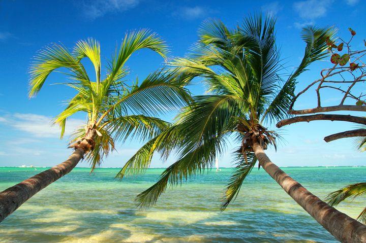 世界に誇る美しい海の数々!死ぬまでに行きたいカリブ海の絶景ビーチ10選