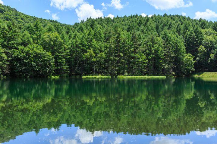 青いだけじゃない!長野のあの池が日本一美しいと言える5つの理由