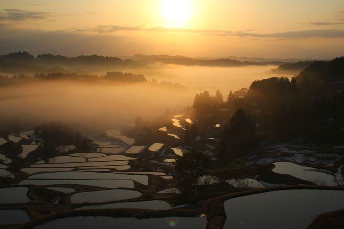 新潟観光の最新トレンド!新潟県の人気おすすめ観光スポットTOP40