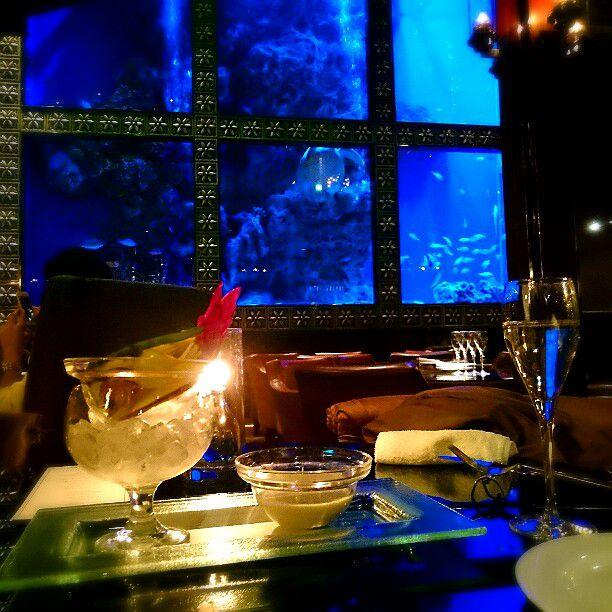 まるで水族館!デートに最適な「アクアリウムレストラン」4選