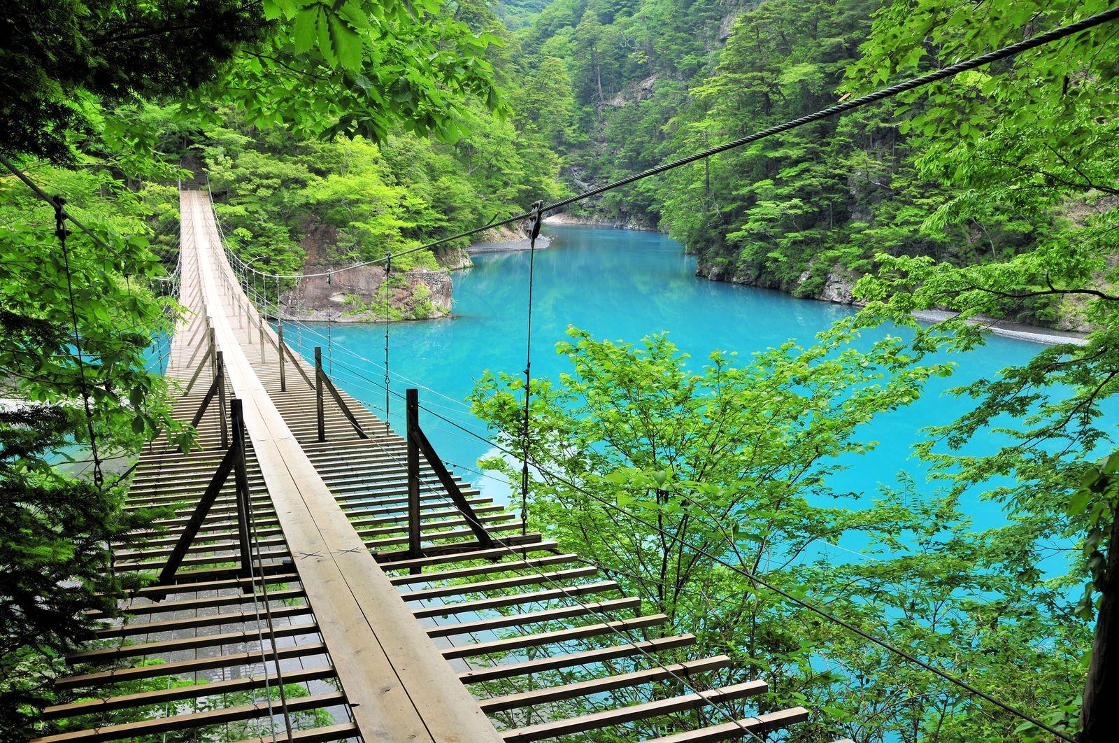 """""""日本一渡りたい""""大自然の絶景橋!ネットで話題の「夢の ..."""