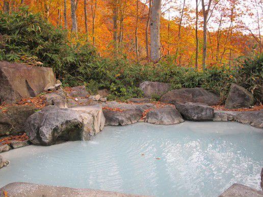 元気の源はこの名泉から!新潟県の人気日帰り温泉とっておき15選