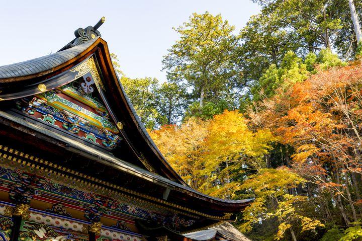秩父の紅葉名所!関東一のパワースポットとして知られる「三峯神社」とは
