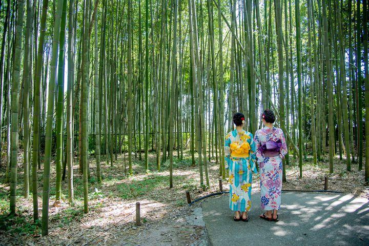 """まるでタイムスリップ!着物で写真が撮りたくなる京都の""""和風スポット""""9選"""
