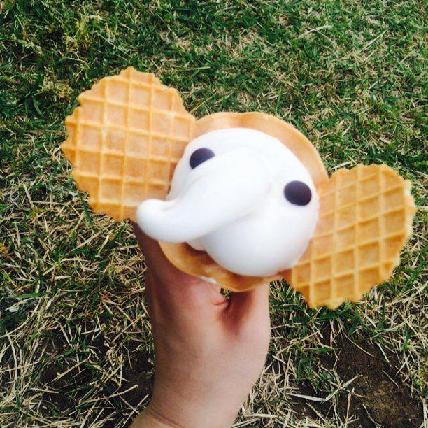 動物好き必見!横浜「象の鼻カフェ」のゾウさんソフトクリームが可愛いと話題
