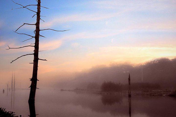 日本屈指の観光地!神秘的な絶景♫上高地・大正池・明神池を楽しむ