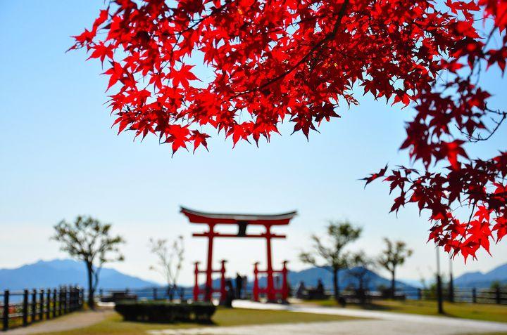 世界遺産級の絶景が集結!絶対行きたい「広島」の紅葉スポット10選