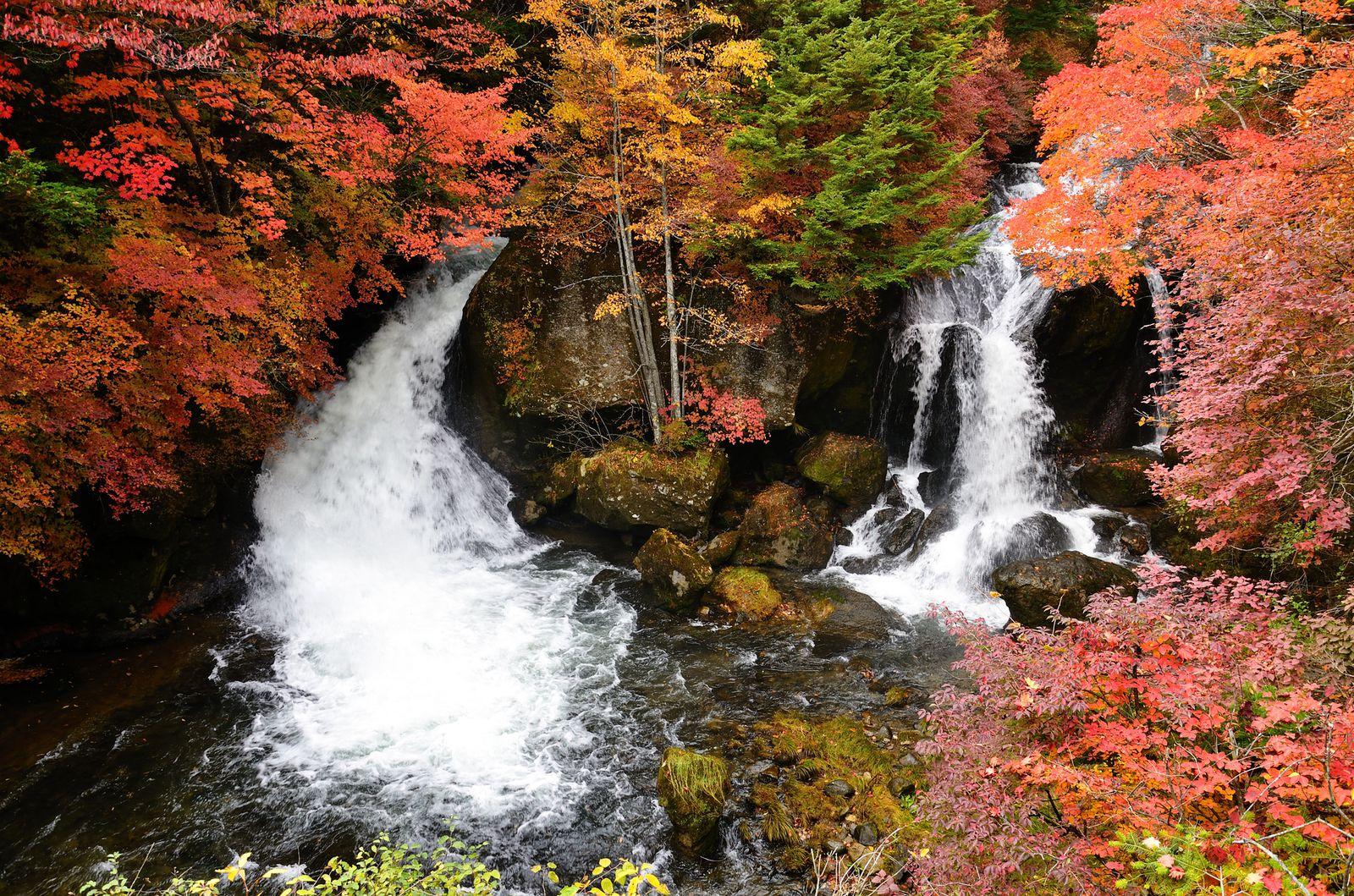 """秋の鮮やかな絶景に癒されよう!""""栃木県""""の絶景紅葉スポットTOP10                当サイト内のおでかけ情報に関してこのまとめ記事の目次"""