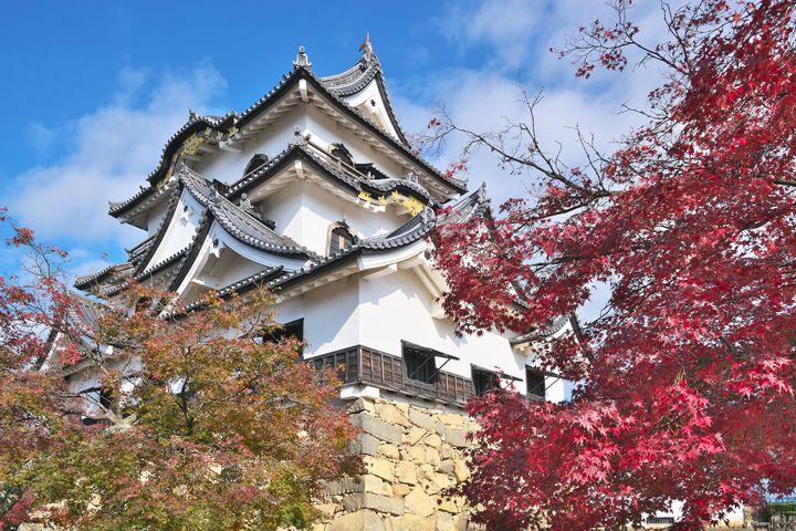 紅葉の季節も岐阜県がアツい!岐阜県の人気紅葉スポット10選