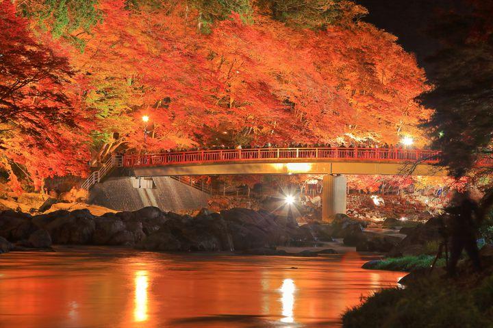 グルメに観光、1DAYトリップにぴったり!三河・豊橋を楽しみ尽くす20の方法