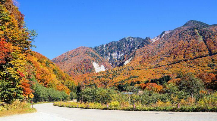 露天風呂から最高の紅葉を眺めよう!岐阜県の「奥飛騨温泉郷」の紅葉が綺麗すぎる