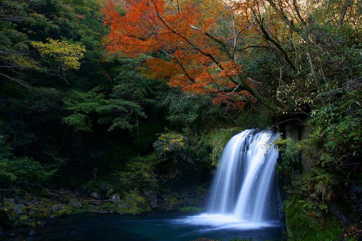 静岡県の紅葉の名所を一挙紹介!静岡県の絶景紅葉スポット10選 ...