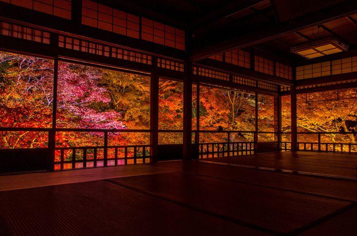2ヶ月間限定の幻の絶景。人生で一度は見たい京都「瑠璃光院」の秋の絶景とは