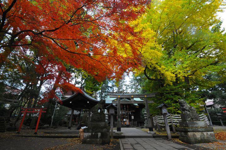 年間400万人が訪れる!香川県・金刀比羅宮の紅葉が素敵だと話題