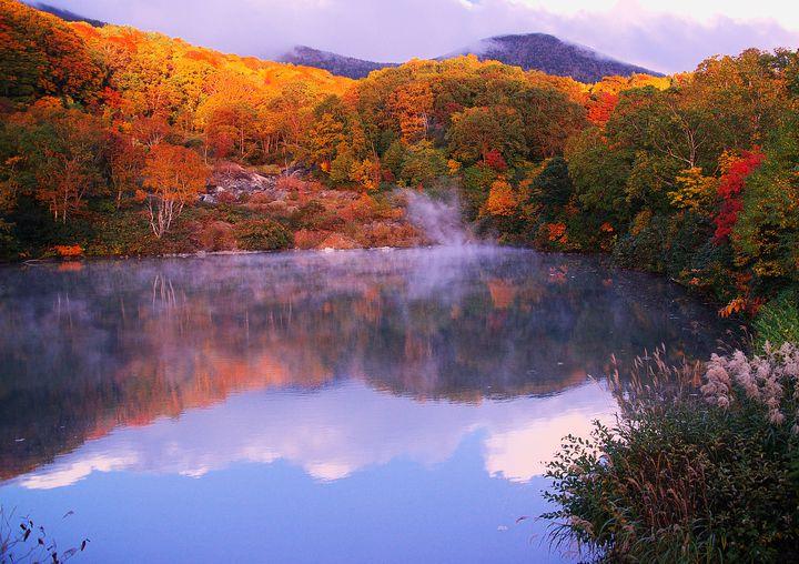 自然の作る奇跡の絶景。青森県の紅葉名所「酸ケ湯温泉・地獄沼」が幻想的だと話題