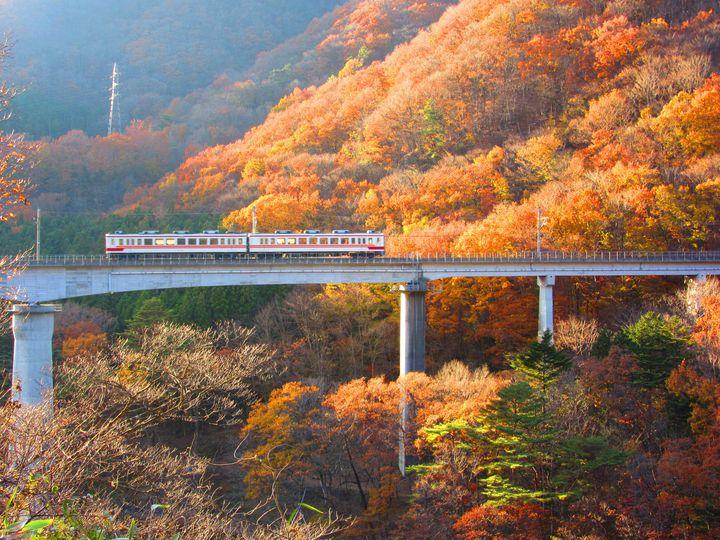 """都内だから見れる絶景がある。東京都内の""""電車で行ける""""紅葉狩りスポット12選"""