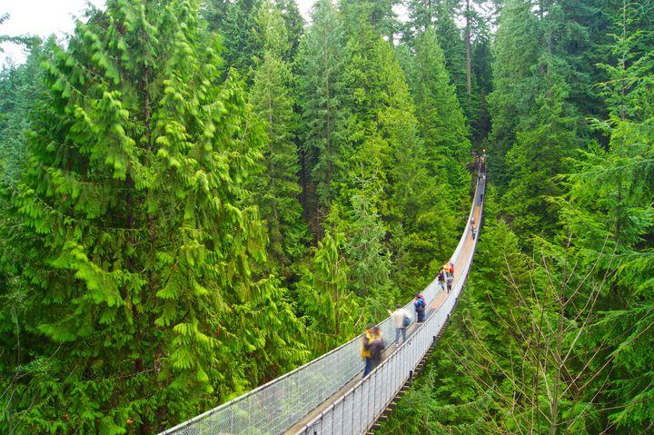 """スリルと自然を一緒に楽しもう!カナダにある""""キャピラノ吊り橋""""が気になる"""