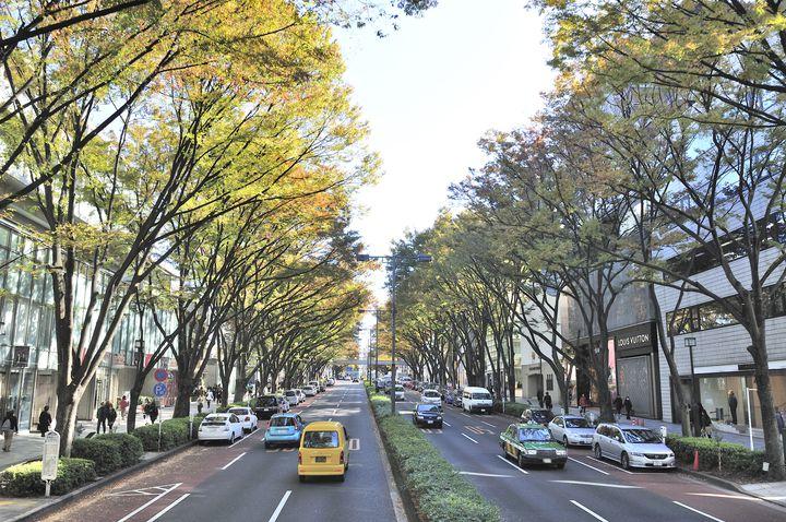 """秋デートならここ!秋を満喫する""""表参道〜外苑前""""のデートプランはこれだ"""