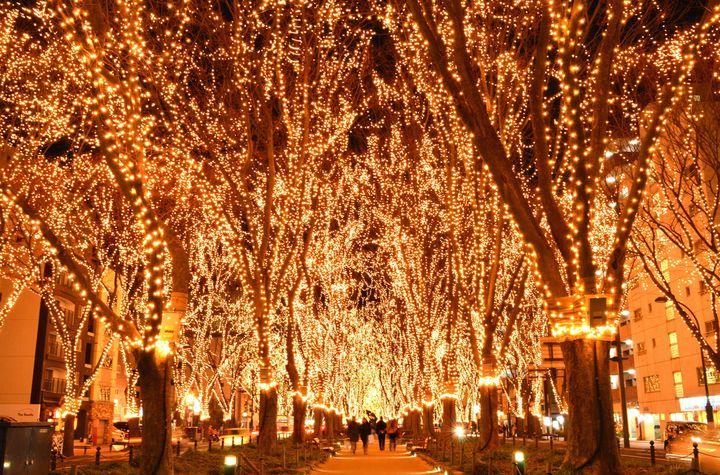 【終了】ケヤキ並木が光輝く!冬の風物詩「SENDAI光のページェント」開催