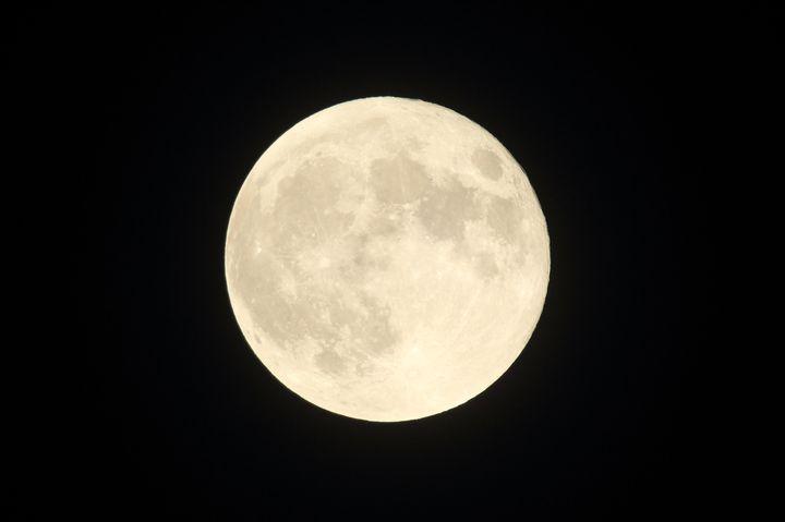 """【終了】68年ぶりに月が地球に最接近!六本木ヒルズで""""最大の満月をみる観察会""""開催"""