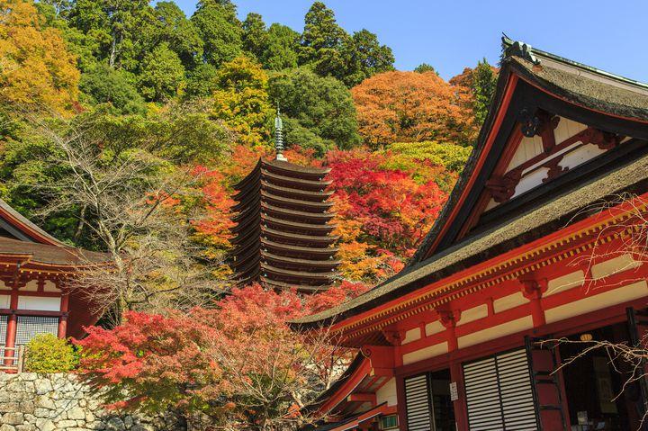 奈良観光で定番!歴男が選ぶおすすめの奈良の寺院ランキングTOP15