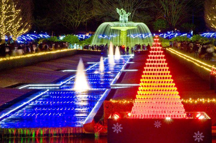 【終了】花火やシャンパンタワーも!「国営昭和記念公園」でイルミネーション開催