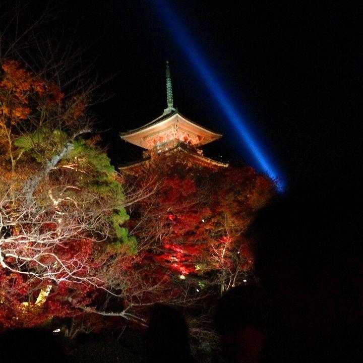 京都へおこしやす!子供も楽しめる「家族旅行観光スポット」おすすめ20選