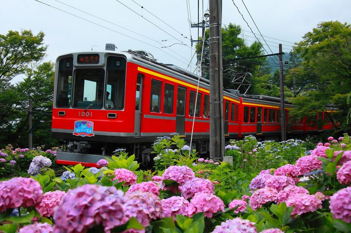 旅が何倍も楽しくなる観光列車!人気の観光列車ランキングTOP20